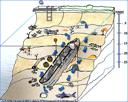 Схема погружений с акулами, Санта-Лусия, Куба