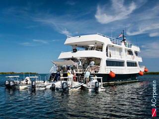 Дайверская яхта Avalon Fleet II